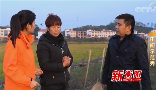 點贊!這位衡陽人憑著鄉村致富好門路被央視報道