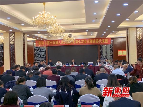 齐心协力谋发展 段志刚参加衡南县代表团审议