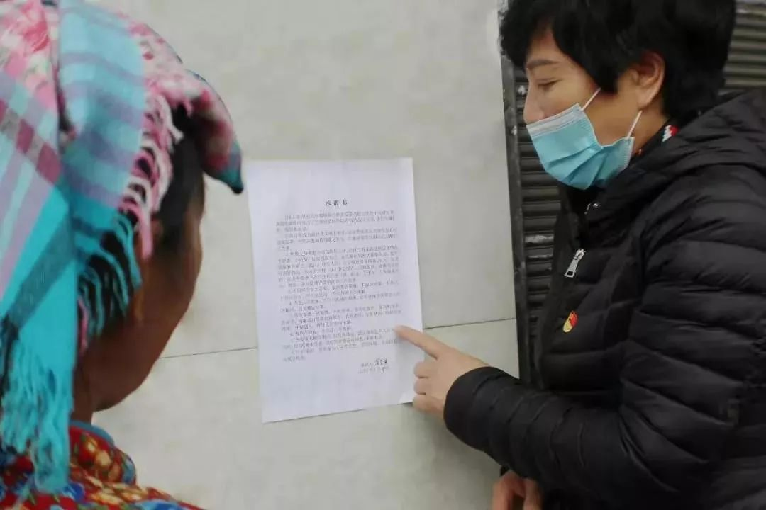 疫情之下,全国妇联执委在行动(三)农村抗疫阻击战中闪亮的旗帜
