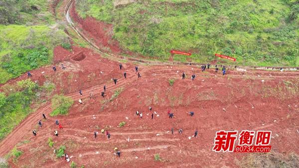 """雁峰区开展义务植树500棵果苗为乡村振兴添""""绿色动力"""""""