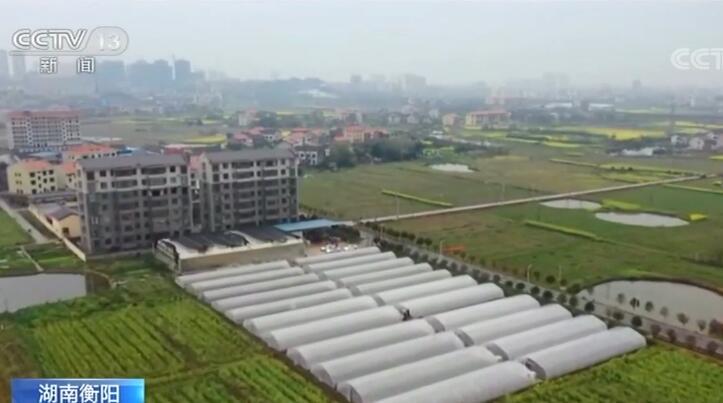 湖南:春耕生產緊 集中育秧忙