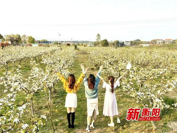 衡陽文旅市場迎春復蘇 清明小長假游客達46.35萬人次