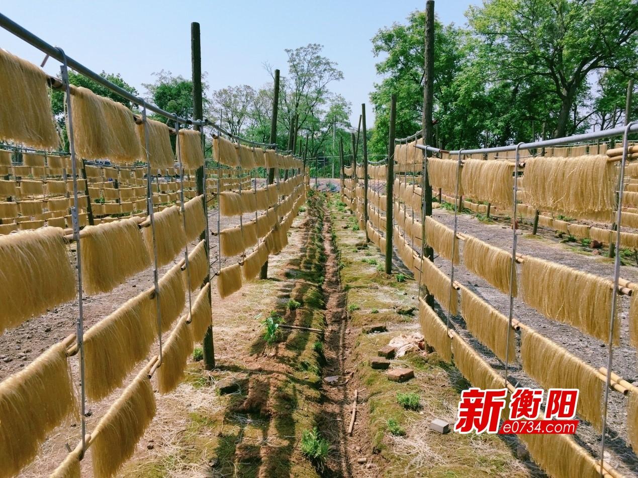 生产的红薯粉在外挂晒晾干2.jpg