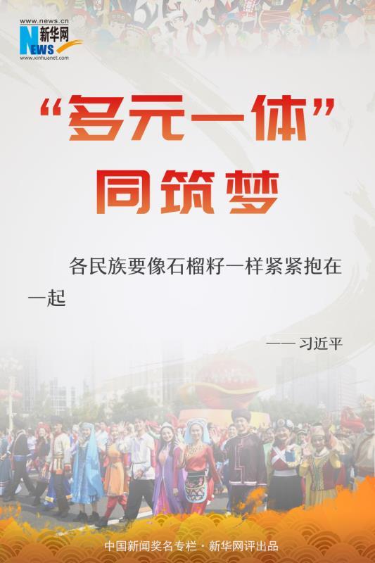 """新華網評:""""多元一體""""同筑夢"""