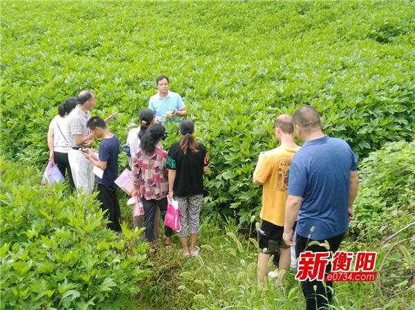 决胜2020:雁峰区农业农村局举办产业扶贫技能培训活动
