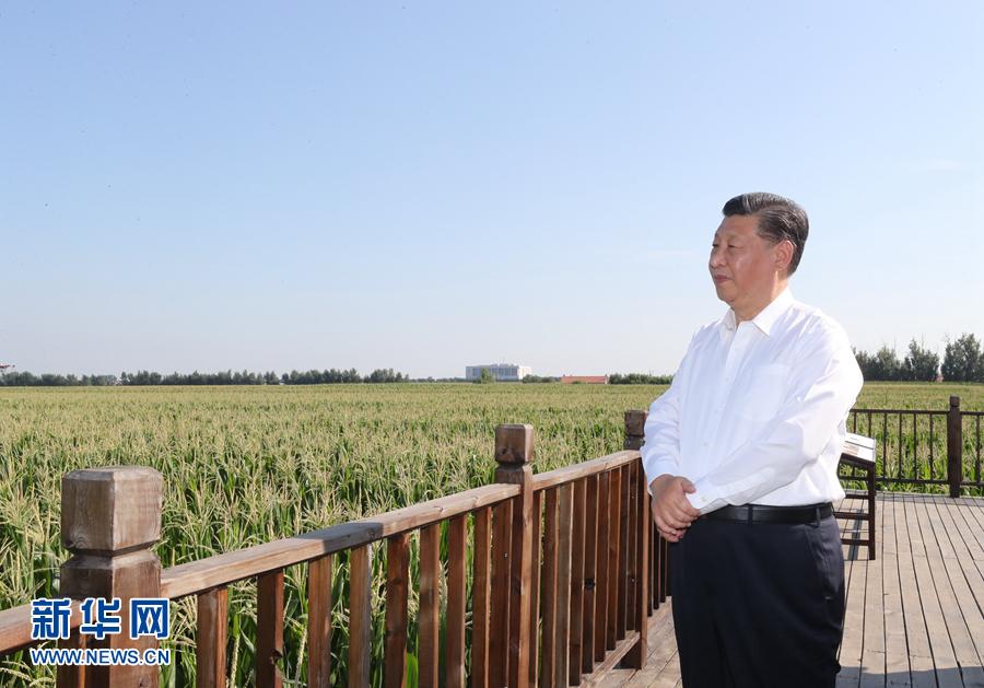 充满希望的田野 大有可为的热土——习近平总书记考察吉林纪实